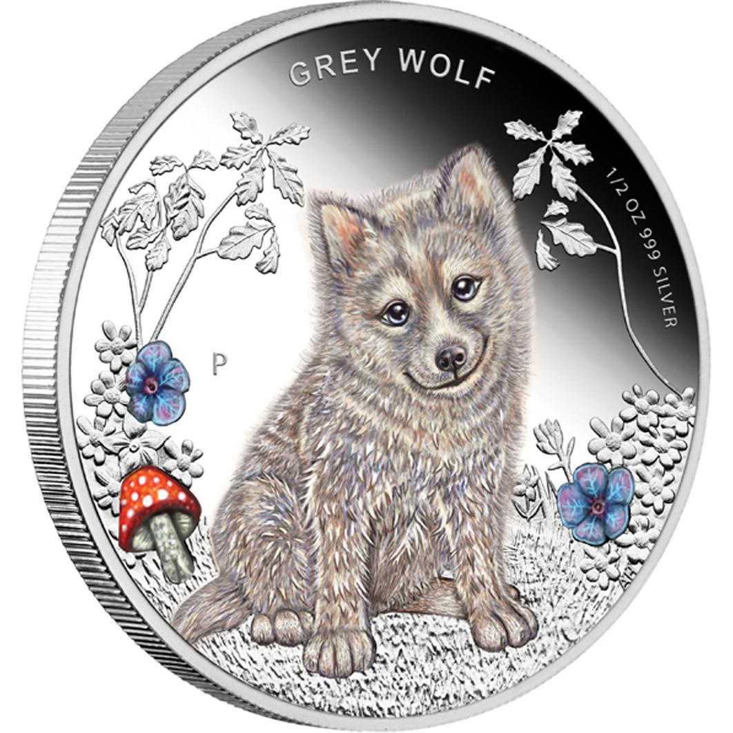 Stříbrná mince Forest Babies - Grey Wolf 2013 1/2oz Proof - Líc