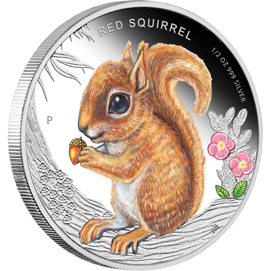 Stříbrná mince Forest Babies - Red Squirrel 2013 1/2oz Proof - Líc
